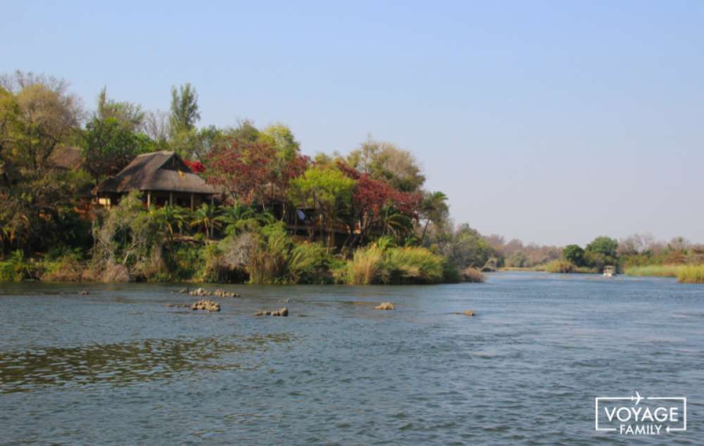 lodge safari botswana en famille